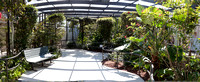 Butterfly World Panorama